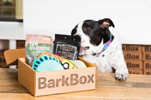 barkbox-sub